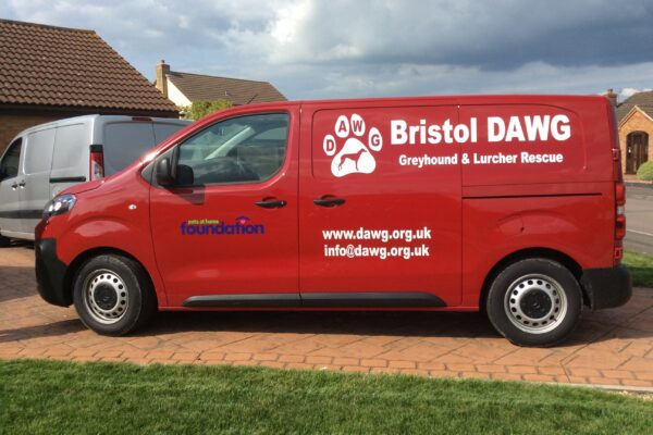 Bristol DAWG